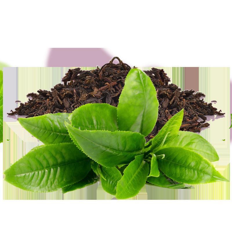 Herbata cbd vv calm liście